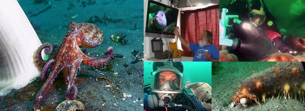 Pacific Marine Research Promo