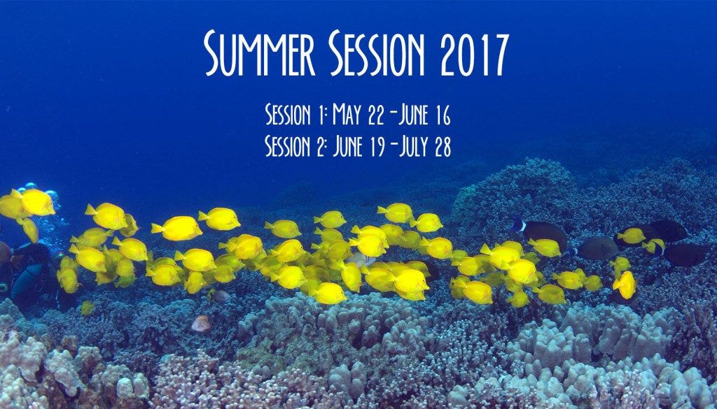 Summer Session 2017