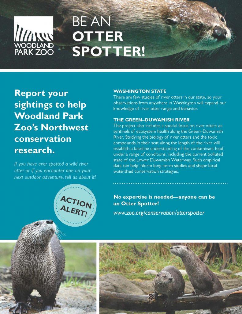 Otter Spotter Flyer