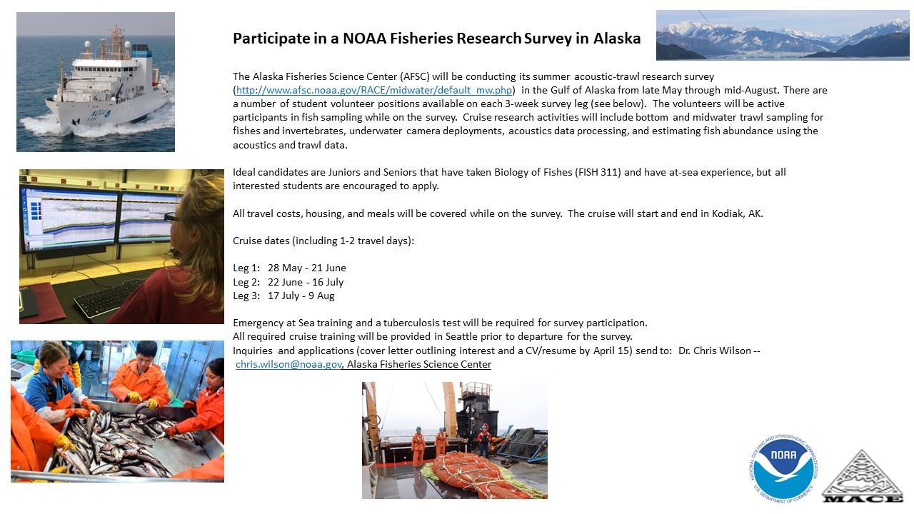 flyer for NOAA AFSC summer research cruise