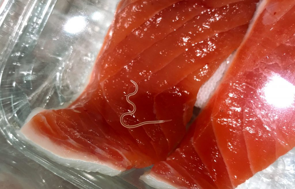 worms on salmon fillet